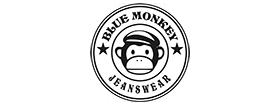 P16 – BlueMonkey